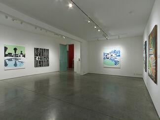 Paul Davies:  Devoid of Sensation, installation view