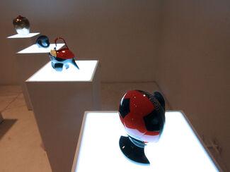EX: EX - Isidora Correa, installation view