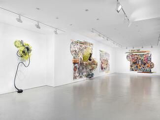 Judy Pfaff, installation view