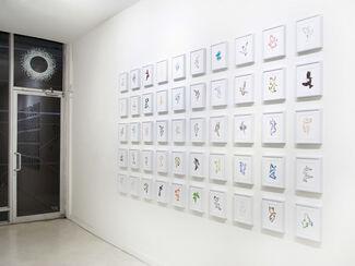 Jason Alexander Byers: 50 States, 50 Birds, installation view
