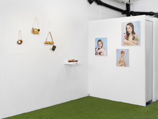 Chloe Wise - That's Something Else, My Sweet, installation view