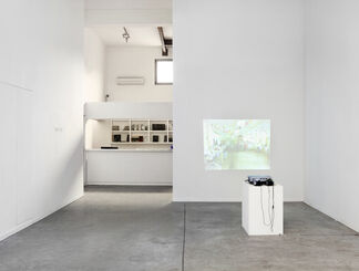 Don't Try, installation view