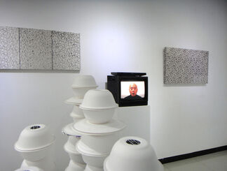 Semiotic Preoccupations: Object, Signs, and Symbols, installation view
