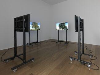 Mark Wallinger: ID, installation view