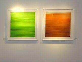 Bonnie Edelman: AWOL, installation view