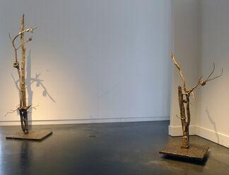 "Carolyn Olbum  ""Metamorphose"", installation view"