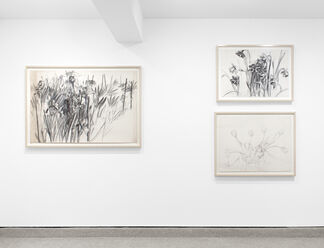 MICHAEL MAZUR: Drawings, 1959 - 2009, installation view