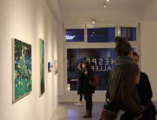 Greta Van Campen, installation view
