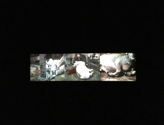 Araya Rasdjarmrearnsook: Niranam, installation view