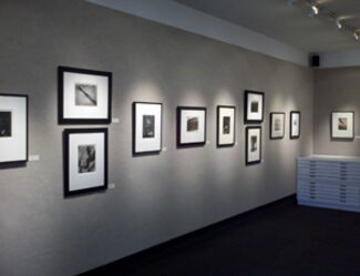 Highlights from the Collection, installation view