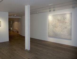 rosenfeld porcini at ArtInternational 2015, installation view