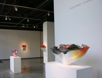 TOOTS ZYNSKY | Endangered Species, installation view