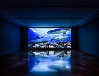 Shezad Dawood : LEVIATHAN : Sunspots and Whales, installation view