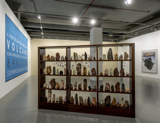 TILL IT'S GONE: An Exhibition on Nature and Sustainability, installation view