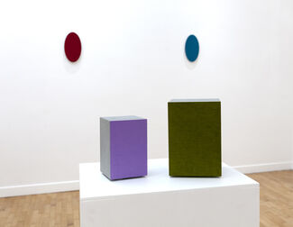 """Stuart Arends and Alfonso Fratteggiani Bianchi """"Lost in Color"""", installation view"""