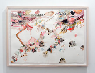 Emilie Clark: Everything Drawings, installation view