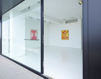 Terry Winters — Why Patterns?, installation view
