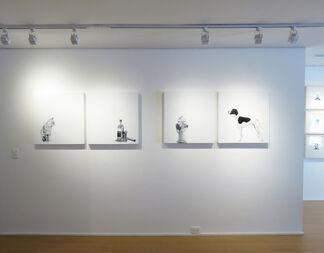 Carlos Alarcón: Trial and Error, installation view