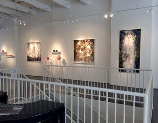 Ysabel LeMay, installation view