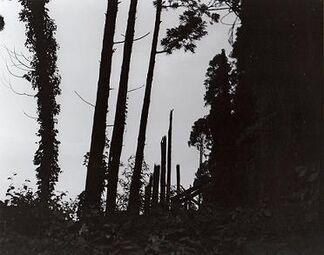 Issei Suda solo exhibition - INSOMNIA -, installation view