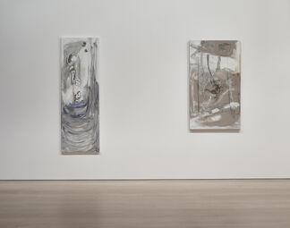 Varda Caivano, installation view