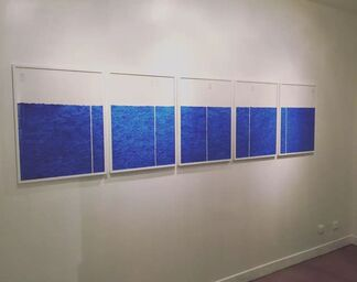 The Fan's Blue, installation view