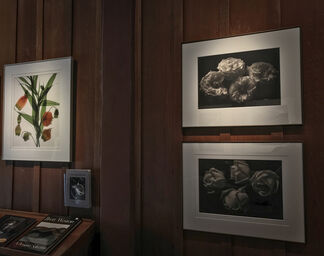 26th Annual Floral Masterworks Exhibition, installation view