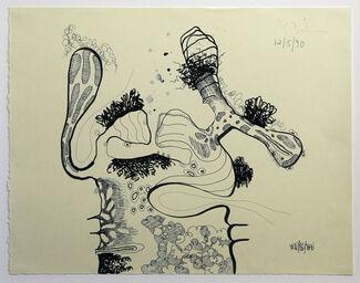 Carroll Dunham: Drawings, 1990 - 2009, installation view
