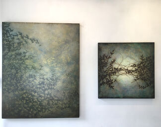 Rooted Down and Rising Up, installation view