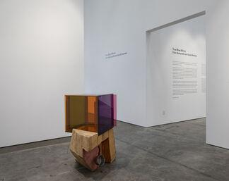 True Blue Mirror: Ellen Berkenblit and Sarah Braman, installation view