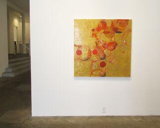 Erin Parish: Preferred Reality Option, installation view