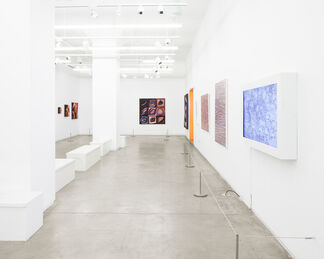 Pixelated: Sum of its Pieces, installation view