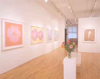 Andy Warhol Forgotten Female and Flowers, installation view
