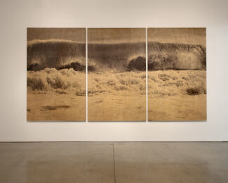 Clifford Ross: Wood Waves, installation view