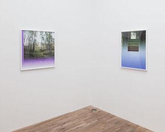 MARK DORF: Emergence, installation view
