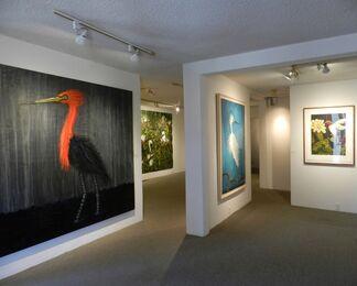 Frank X. Tolbert: The Texas Bird Project, installation view