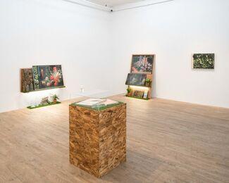 MARK DORF: Transposition, installation view