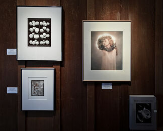 Women Photographers, installation view