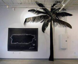 Anabel Vázquez Rodríguez: RETROPICAL, installation view
