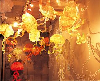 Medusa, installation view