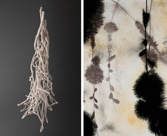 Sherry Owens and Suzi Davidoff:  Nature Gathered, installation view