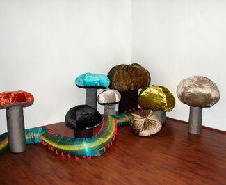 Zoolandia, installation view