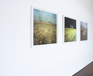 Vestige   Guest Curated by Jason Owen & Sam Easley, installation view