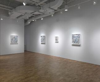Scott Wolniak: Fields, installation view