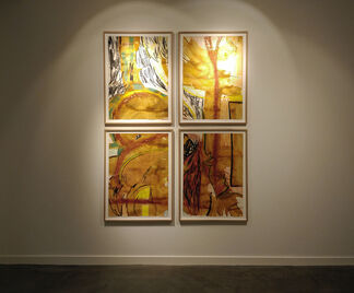 Introducing... David Minařík!, installation view