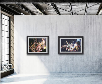 The Dead Kennedys, installation view