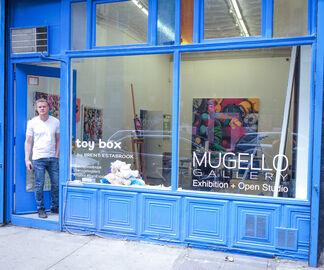 'ToyBox', installation view