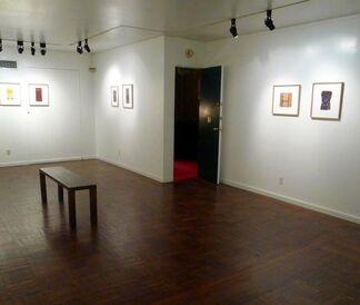 Sheila Hicks: Ode to Roy Davis, installation view