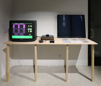Show #32: Video Game Art 1970-2005, installation view