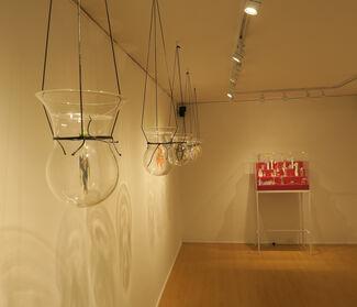 """Altars & Devotions"" - Teresa Currea, installation view"
